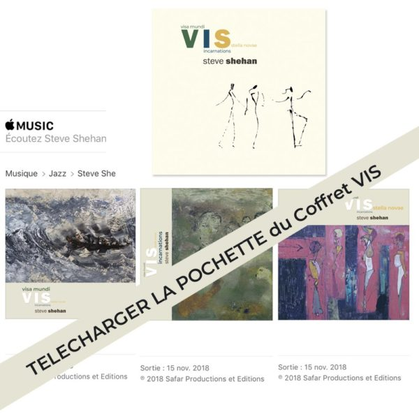 Pochette - Coffre V.I.S